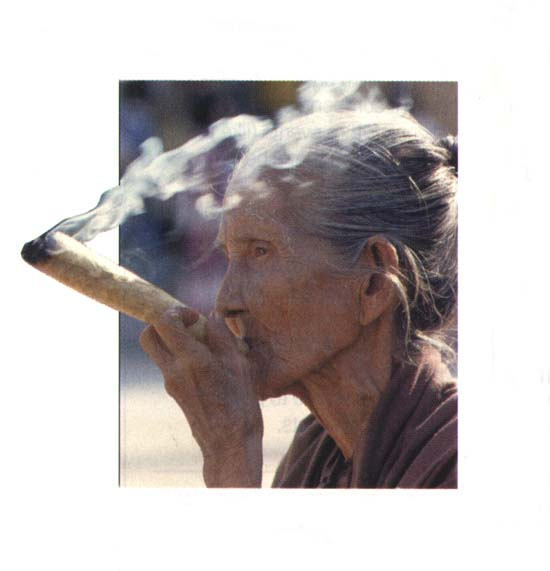 cannabis-marijuana.com : Grandma Knows Best